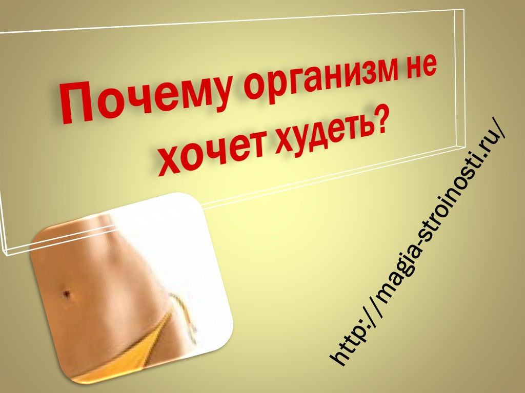 продукты от которых худеют женщины