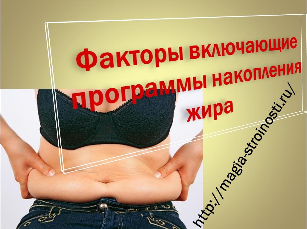 Сбросить жир живота домашних условиях