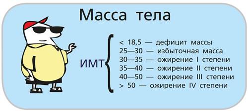 Индекс массы тела ИМТ