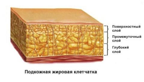 шестиразовое питание для похудения