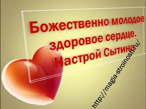 Божественное здоровое сердце. Настрйо Сытина