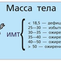 Индекс массы тела. Калькулятор ИМТ